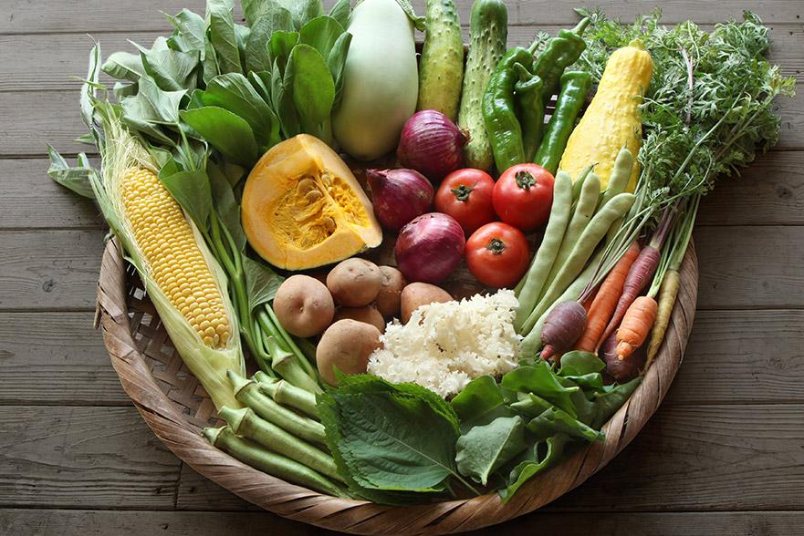 小野さんは「開けたときに宝箱感のあるセット」と表現されていた野菜セット